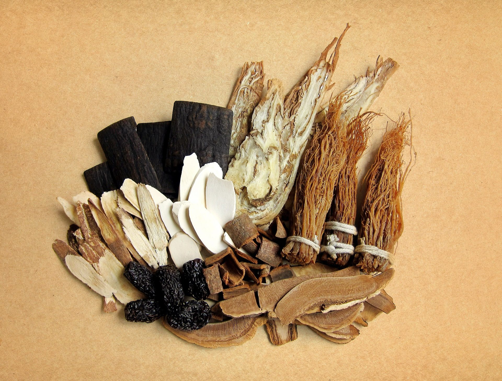 a selection of common raw Chinese herbs